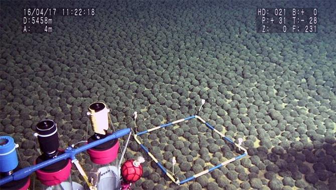 潜水調査船で確認されたマンガンノジュール密集域。真球形のマンガンノジュールが海底をほぼ埋め尽くすように分布している