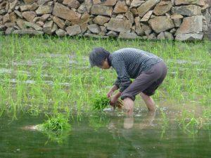 都市との格差解消、日本から学べ―日中交流で農村リーダー育成へ