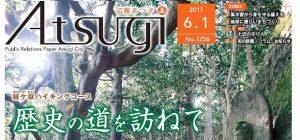 広報あつぎ 第1256号(平成29年6月1日発行)