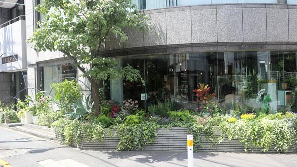ローランズ原宿店 social flower & smoothie shop外観