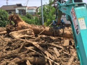 巨大な流木に撤去作業も難航