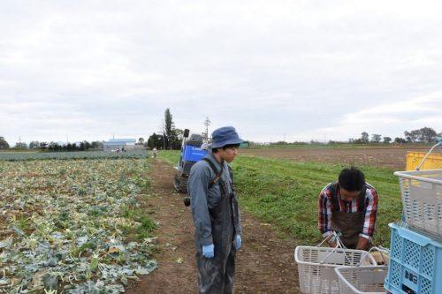 雑誌編集者として北海道の農家・雑貨店・カフェなどを取材