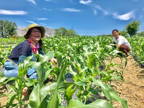 郡山市内の農園で農作業をする隼人さんと、奥さんの香織さん
