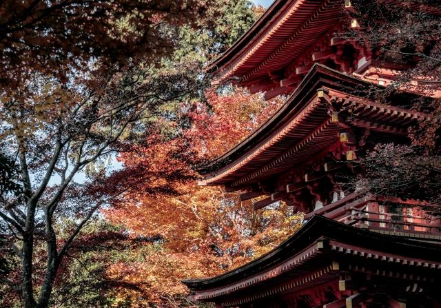 [京都・木津川市]秘宝・秘仏の公開~まだまだ続く仏像ブーム。